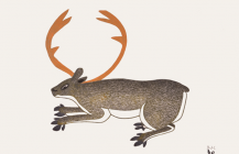 Hidden Caribou