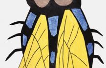 Qaumajaq (Fly)