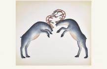 Rutting Caribou