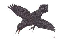Raven's Alarm, 2001