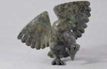Dancing Hawk
